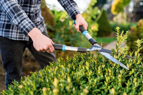 Nożyce ogrodowe proste IDEAL™